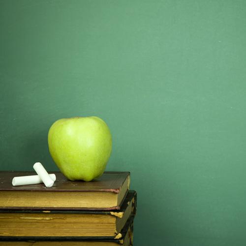 Schools in Ascot